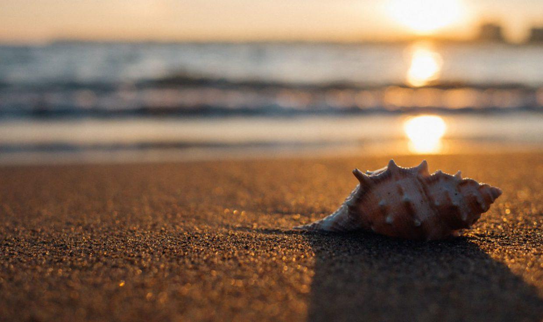 Stranden Nederland